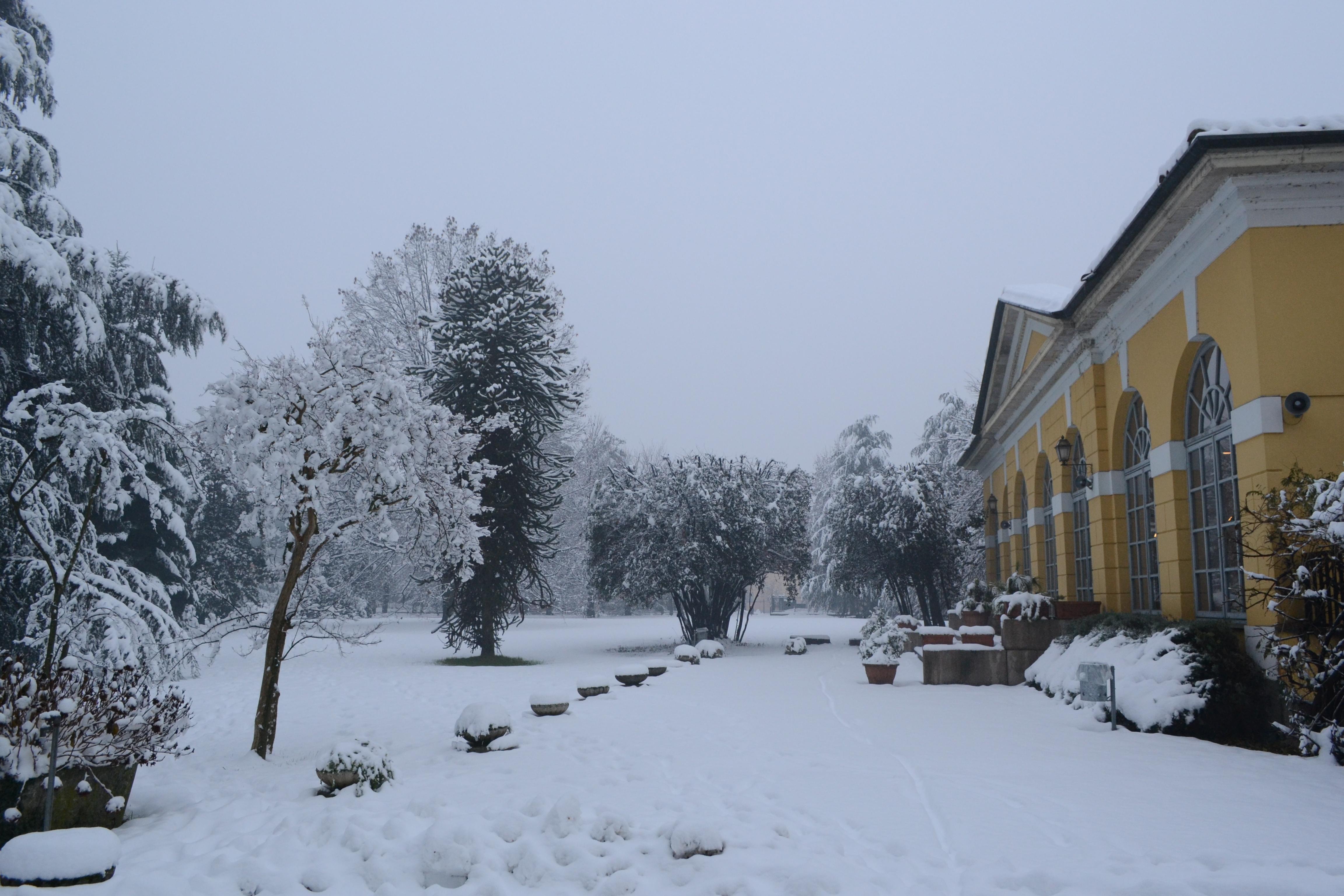 Parco comunale nevicata